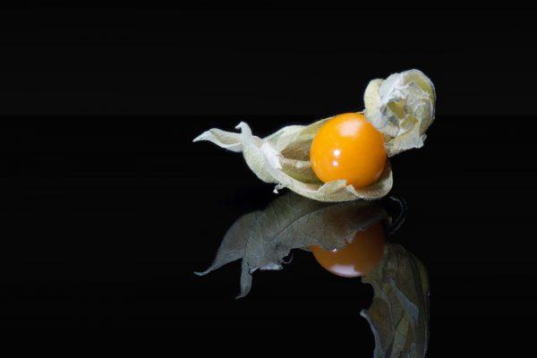 Luminance 2016_Jean-Olivier WEBER et Stéphanie CAYET_Effervescence culinare_4