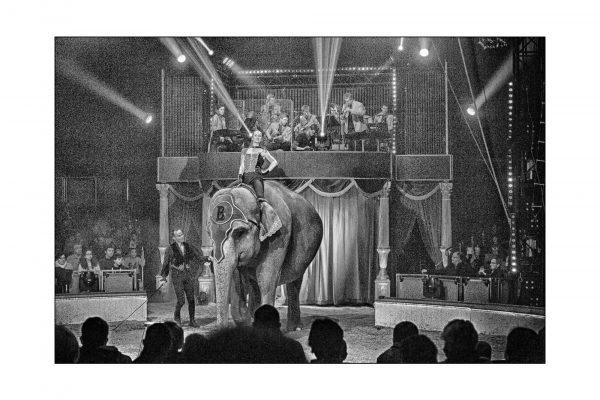 Luminance 2016_Patrice KESSOURI_Le cirque_5