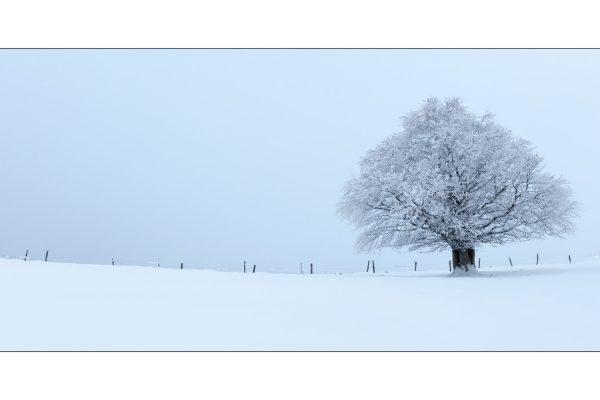 Luminance 2017_Christophe MICHLER_Paysages de neige_1