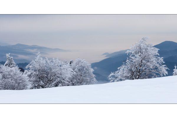 Luminance 2017_Christophe MICHLER_Paysages de neige_3