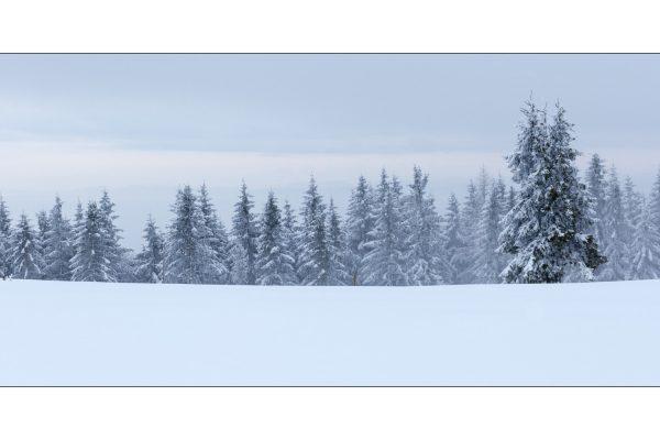 Luminance 2017_Christophe MICHLER_Paysages de neige_6