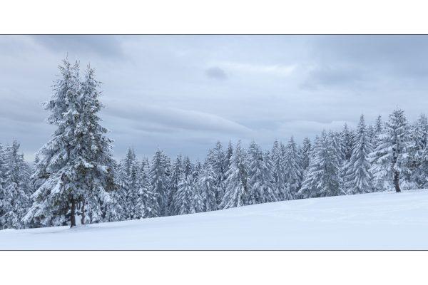 Luminance 2017_Christophe MICHLER_Paysages de neige_7