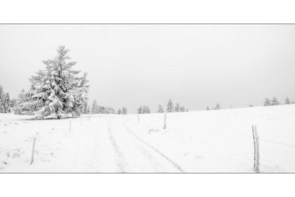 Luminance 2018_Éric SCHWARTZ_Jour de neige_2