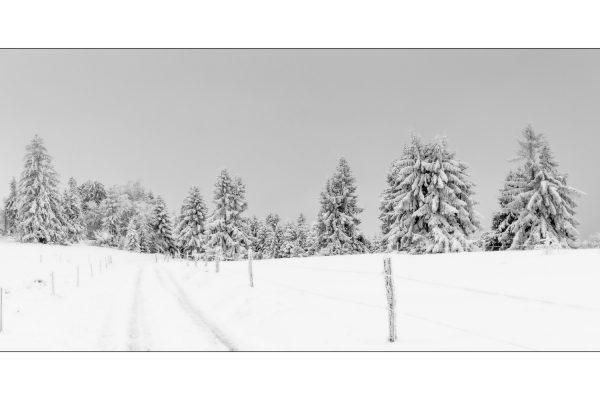 Luminance 2018_Éric SCHWARTZ_Jour de neige_4