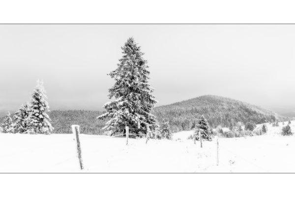 Luminance 2018_Éric SCHWARTZ_Jour de neige_5