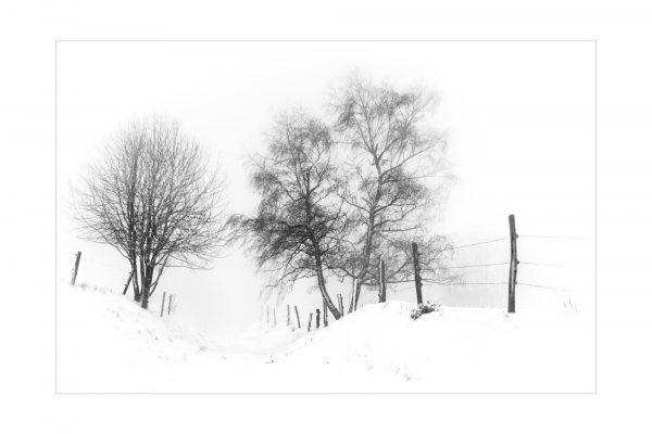 Luminance 2018_Patrick ROUSCHMEYER_Épures hivernales_5