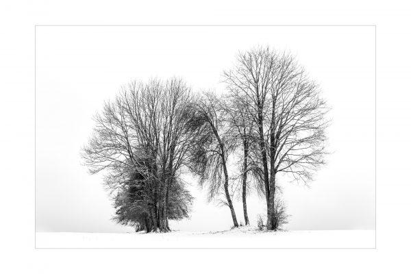 Luminance 2018_Patrick ROUSCHMEYER_Épures hivernales_8