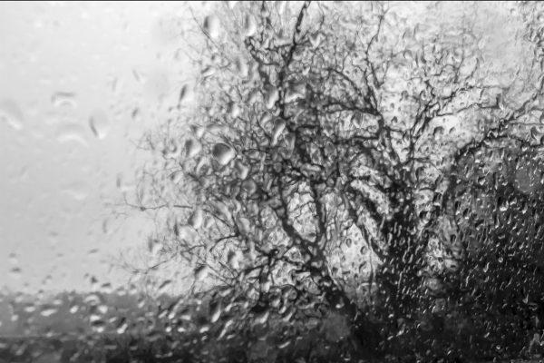Luminance 2021_Manuela LIENHARD_Un jour de pluie_012_1_A_Manuela_Lienhard