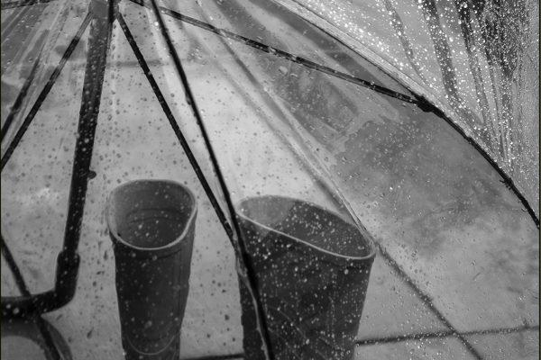 Luminance 2021_Manuela LIENHARD_Un jour de pluie_012_3_D_Manuela_Lienhard_2