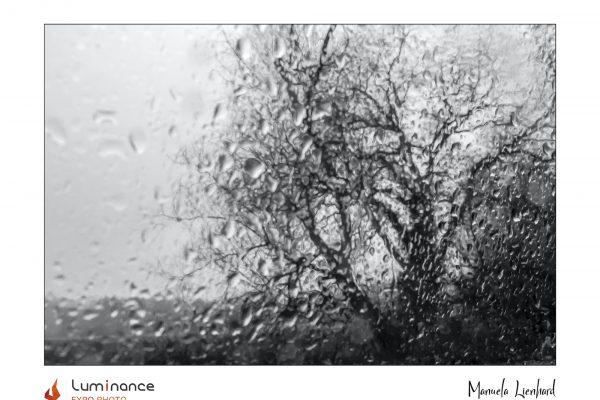 Luminance 2021_Manuela LIENHARD_Un jour de pluie_B_012_1_A