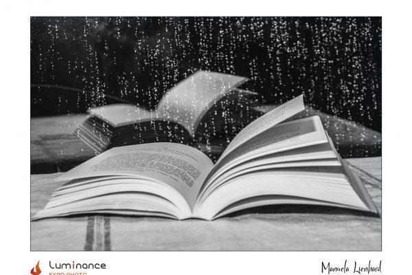 Luminance 2021_Manuela LIENHARD_Un jour de pluie_B_012_4_A