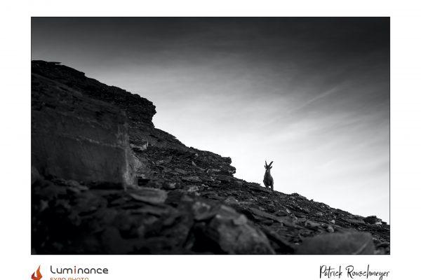 Luminance 2021_Patrick ROUSCHMEYER_Ligne de crête_B_039_2_A