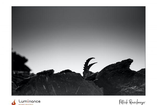 Luminance 2021_Patrick ROUSCHMEYER_Ligne de crête_B_039_3_A